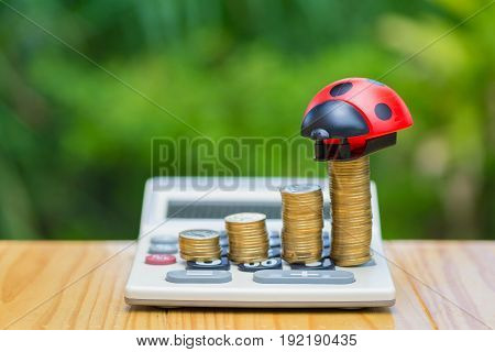 Growing Coins And Calculator On Wood Table With Ladybug Toy On Green Tree Bokeh Background.