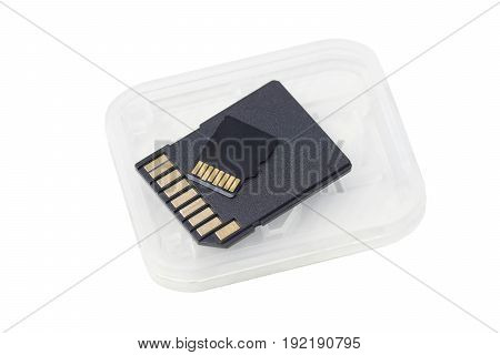 Sd card and micro sd card isolated