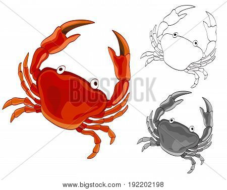 Crab drawing with grayscale and coloring page versions. vector illustration