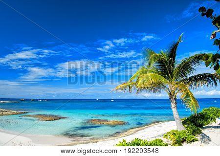 Beach Or Coast With White Sand