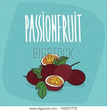 Isolated Ripe Passion Fruit Or Passionfruit
