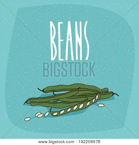 Isolated Ripe Vegetable Pod Fruits Of Pea Or Beans
