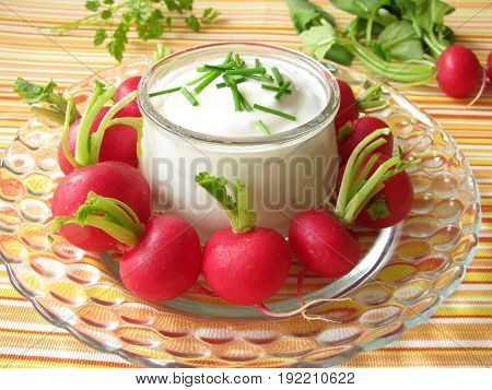 Radishes with yogurt dip and chive herbs