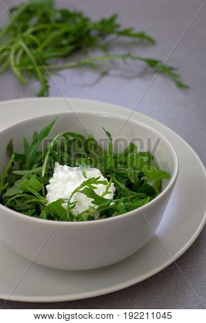 Salad with green arugula plant and cottage cheese isolated. Rustic style. Gray stone background. Close-up. Top view
