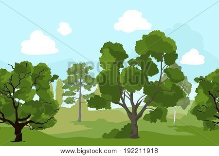 Forest landscape with different green trees and grass. Vector background illustration in cartoon style. Green forest nature with tree and grass