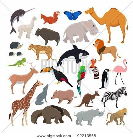 Big vector set with wild cute animals isolate on white background. Collection of character animals mammal lion and zebra, cheetah and butterfly illustration