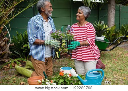 Smiling senior couple holding plants while kneeling on field together in backyard