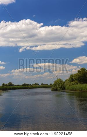 Landscape with water and vegetation in the Danube Delta Romania