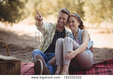 Smiling young man showing something to woman while sitting at olive farm