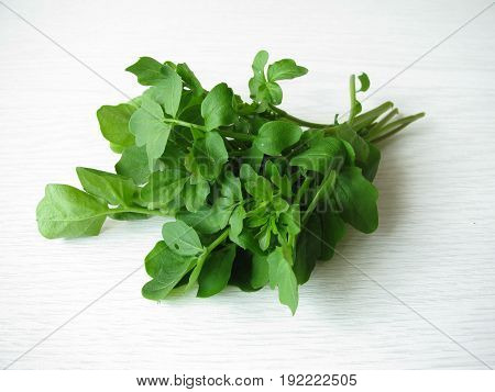 Bunch of watercress in spring, Nasturtium officinale