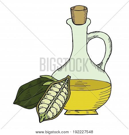 Sesame oil bottle or jug, nuts, natural organic butter ingredient. Hand drawn ink sketch illustration. Sesame seed, pods isolated on white. Treatment, care, food ingredient.