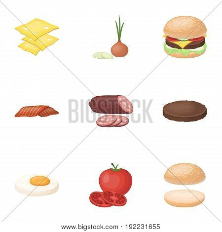A set of pictures about burgers and ingredients for a sandwich. Burgers ang ingredients icon in set collection on cartoon style vector symbol stock web illustration.