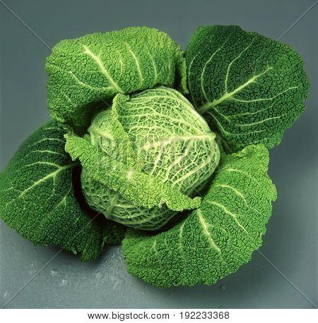 Fresh cabbage food. fresh.  cabbage green  vegetable, vegetarian.healthy,