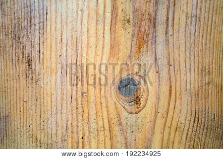 Background wood Board texture. Saw cut wooden patterned flat. Wood with rings of life.