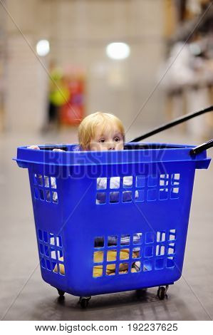 Cute Little Boy Sitting/hiding In The Plastic Shopping Cart In A Modern Home Furniture Store