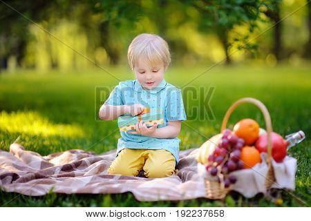Little Boy Opening Nicely Wrapped Gift During Picnic In Sunny Park