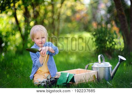 Cute Little Boy Holding Garden Tools On The Domestic Garden At Summer Sunny Day