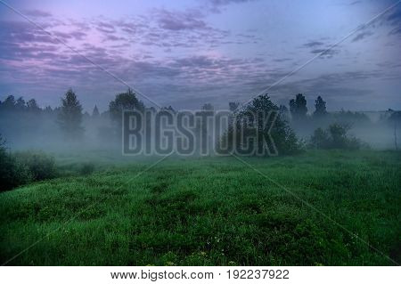 Landscape With Forest And Field With Fog