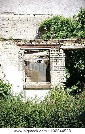 A building ruin that has been overgrown with vegetation and is endangered.
