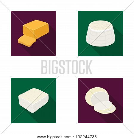 Mozzarella, feta, cheddar, ricotta.Different types of cheese set collection icons in flat style vector symbol stock illustration .