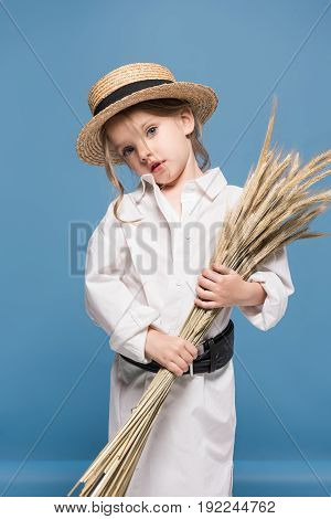 Beautiful Little Girl In White Shirt And Straw Boater Holding Wheat Ears Isolated On Blue