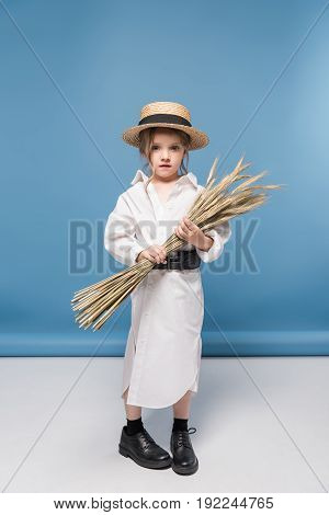Adorable Little Girl Standing Dress And Straw Boater While Holding Wheat Ears, Studio Shot On Blue