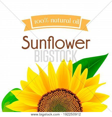Natural sunflower oil label or advertising poster vector illustration. Banner with sunflower for oil product, eco oil from sunflower
