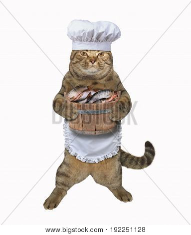The cat cook is holding a wooden barrel of fish. White background.