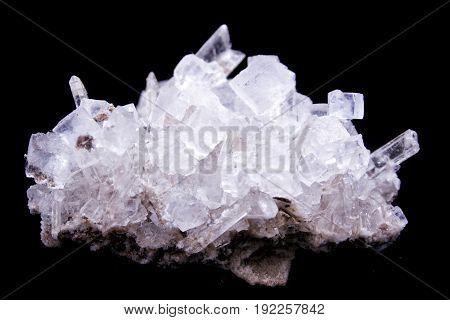 Calt Crystals