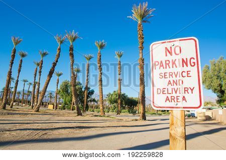 No Parking sign with palm trees and blue sky