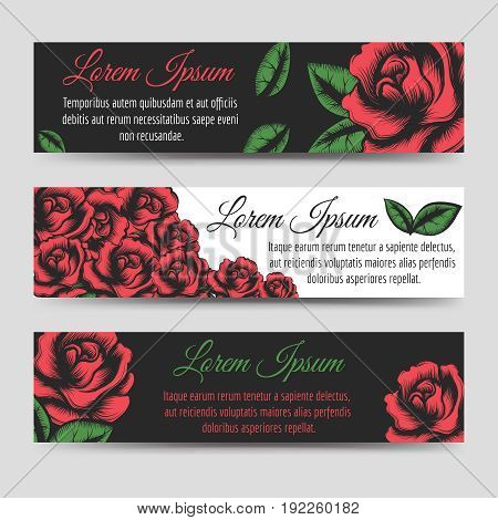 Red rose flowers horizontal banners template, vector illustration