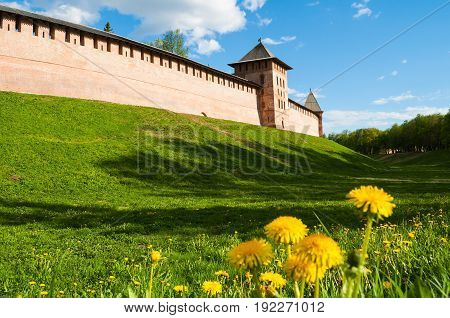 The towers of Novgorod Kremlin Veliky Novgorod Russia selective focus at the architecture architecture landscape of Veliky Novgorod Russia with dandelions on the foreground