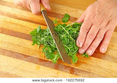 A man chops fresh cilantro on a wood cutting board from overhead