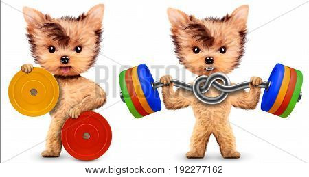 Funny dogs training with barbells in sport gym. Concept of sport and fitness. Realistic 3D illustration.