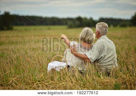 Happy senior couple on mowed field of wheat
