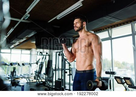 muscular bodybuilder working out in gym exercising biceps
