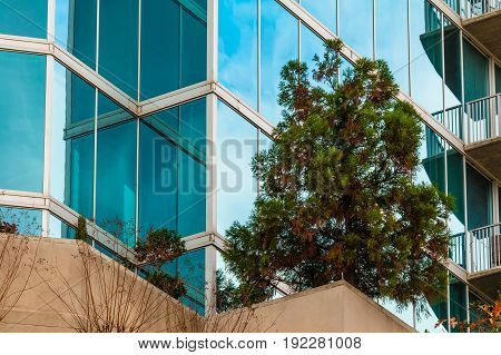 The larch on the balcony of skyscraper in front of glass facade closeup Atlanta USA