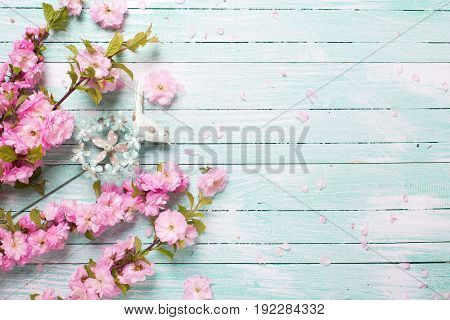 Pink almond flowers on turquoise wooden background. Place for text. Selective focus. Top view.