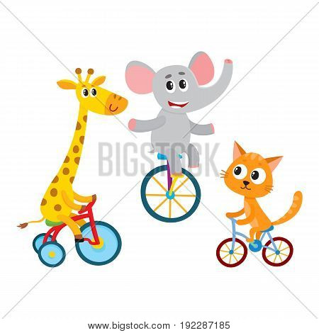 Cute elephant, giraffe, cat animal characters riding unicycle, bicycle, tricycle, cycling, cartoon vector illustration isolated on a white background. Little baby animal characters riding bicycles