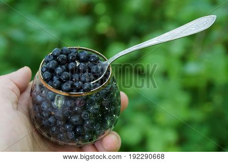 Glass goblet with a spoon full of blueberries in hand
