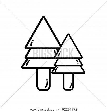 line natural pine trees botany icons vector illustration