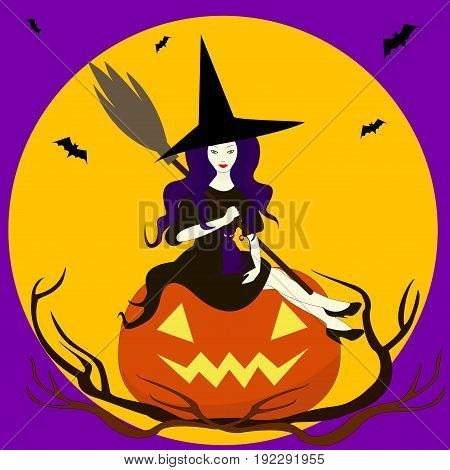 Beautiful sorceress isolated sits on pumpkinIn hand broomon knees cat.Merry cartoon witch.Vector illustration of a valpurgis night. Enchantress in a hat black dress Halloween.Full moonwitch coven