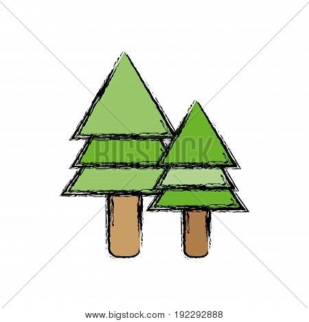 natural pine trees botany icons vector illustration