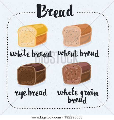 Vector illustration of set of cartoon brick bread - rye bread, wheat bread, whole grain bread, wheat bread.