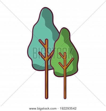 natural trees with botany icons vector illustration