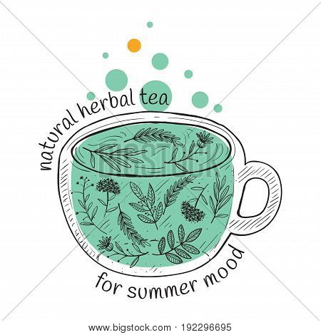 Vector card design with hand drawn tea illustration. Decorative inking background with vintage tea sketch. natural herbal tea for summer mood