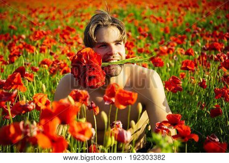 Guy With Muscular Body In Field Of Red Poppy Seed