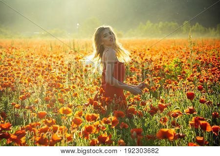 poppy seed and girl with long curly hair in red dress in flower field with green stem on natural background summer spring drug and love intoxication opium