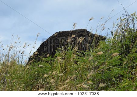 black rock boulder in grass with blue sky