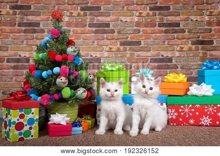 Two Fluffy white kittens sitting on brown carpet next to Christmas tree decorated with yarn balls and toy mice surrounded by bright colorful presents. Brick wall background